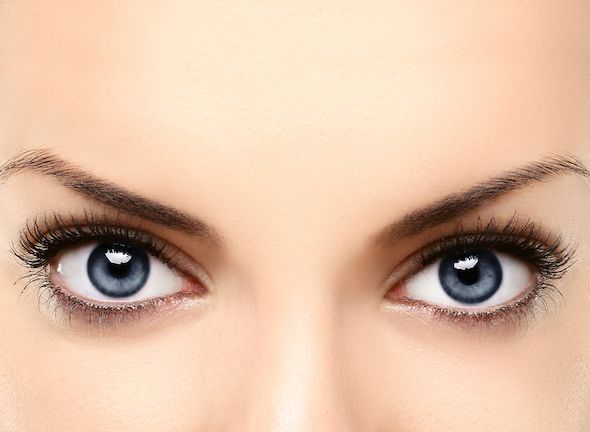 Tipos de cejas según forma del rostro EverydayMe México Tips de - tipos de cejas