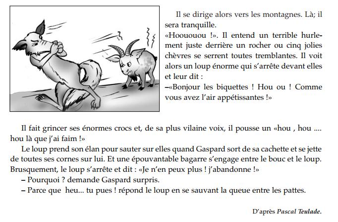 Gaspard qui pue/ 5eme/ résumé et activité. en 2020