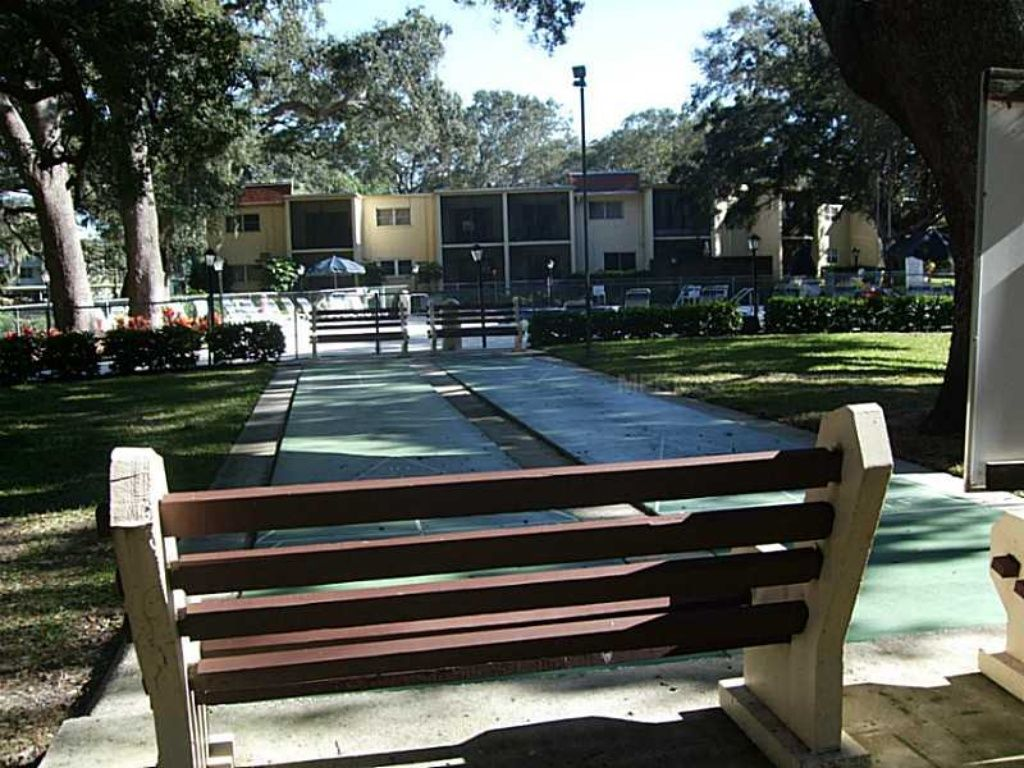 Shuffle boad at paticia oaks condominiums dunedin fl
