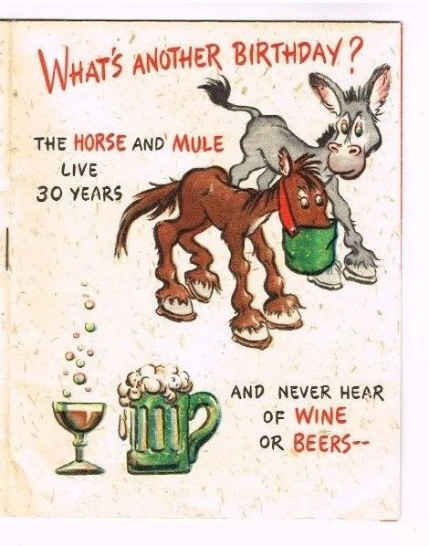 Vintage Birthday Card Mule Horse Kitty Cow Sheep Wine Old Age Book