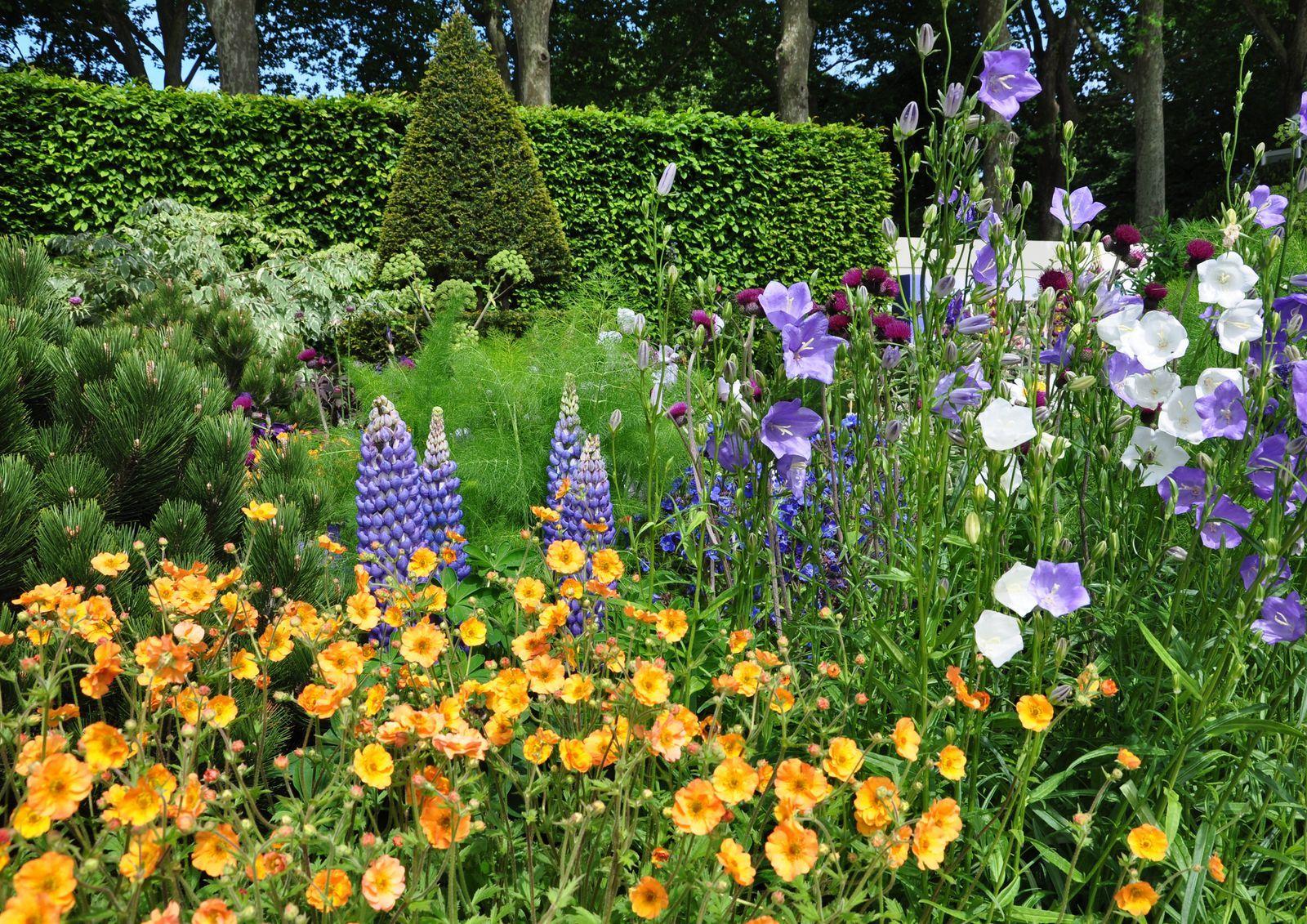 Chelsea Flower Show 2019 Dates Tickets And Garden Highlights Chelsea Flower Show Flower Show Chelsea Flower