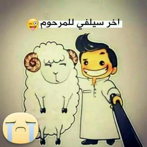 Desertrose سيلفي Arabic Funny Funny Arabic Quotes Ramadan Quotes