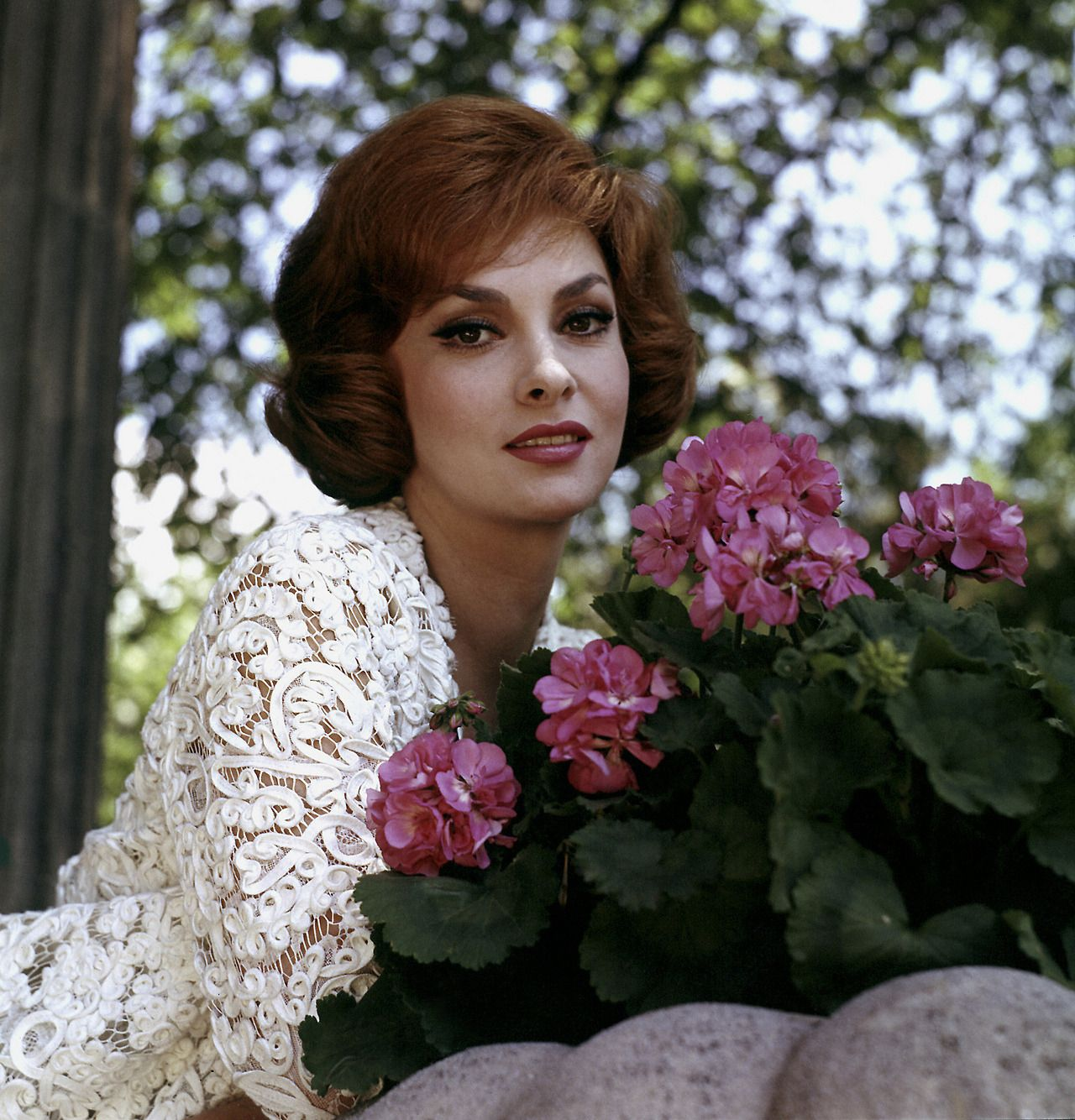 Gina Lollobrigida (born 1927) Gina Lollobrigida (born 1927) new pictures