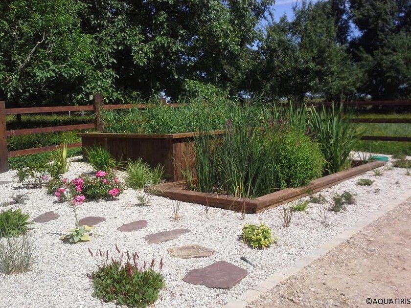 Le jardin du0027assainissement  une solution écologique et esthétique - assainissement d une maison