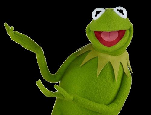 Pin em Kermit the frog