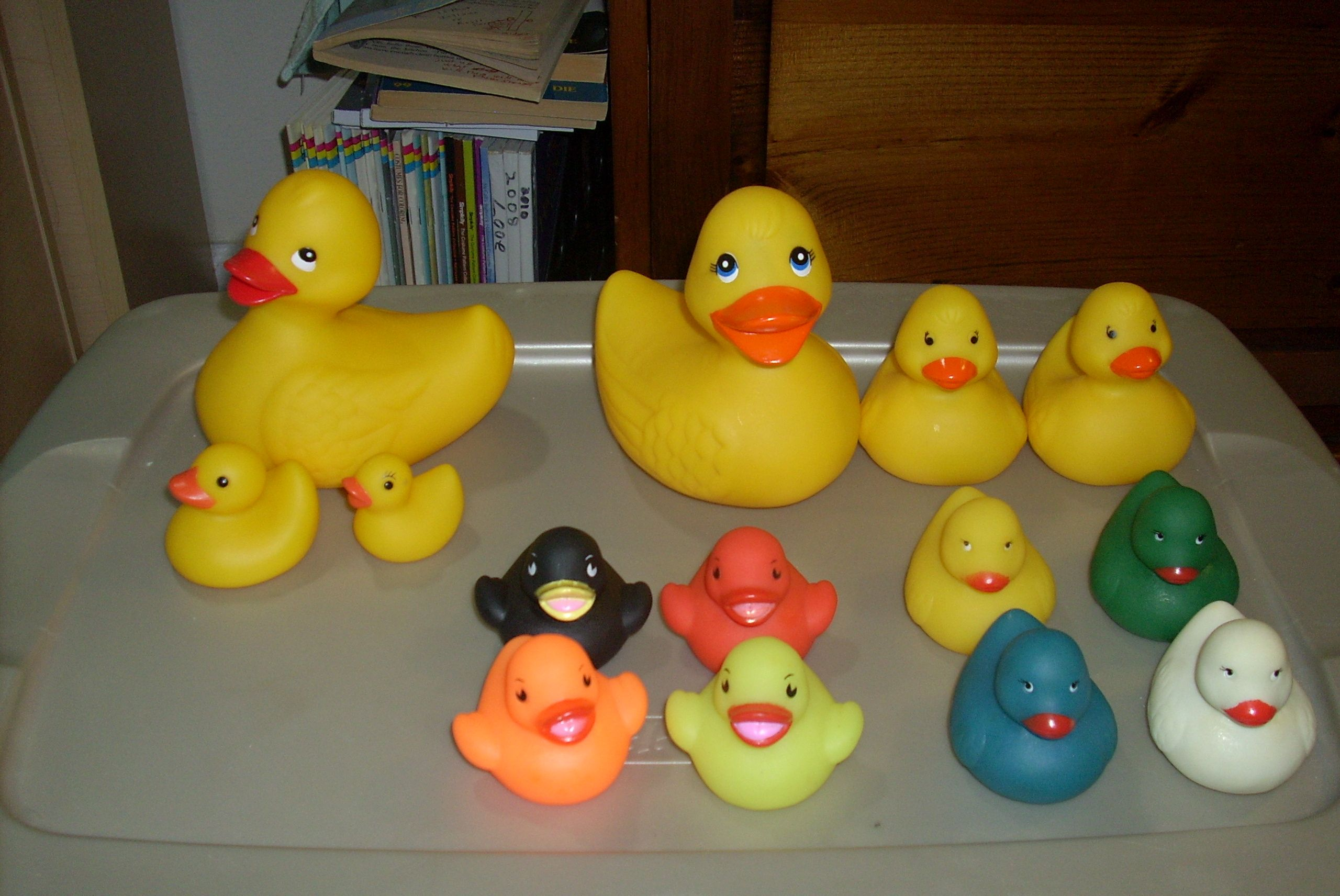 baby duck food walmart