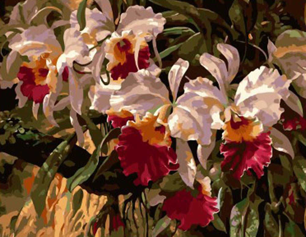 Картина по номерам «Орхидеи» GX7481 Paintboy (Premium ...