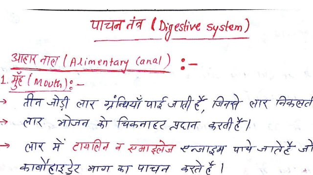 Dbms Notes Pdf In Hindi