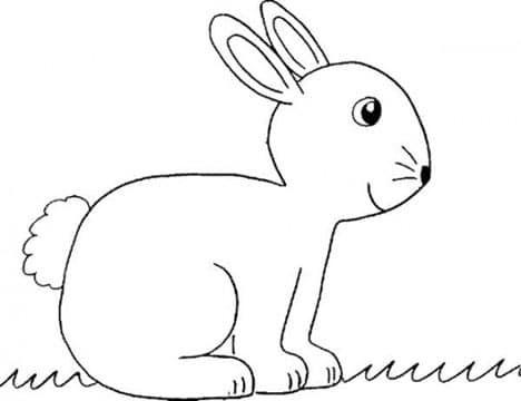conejos faciles de dibujar e imprimir  Jocs nadal familia