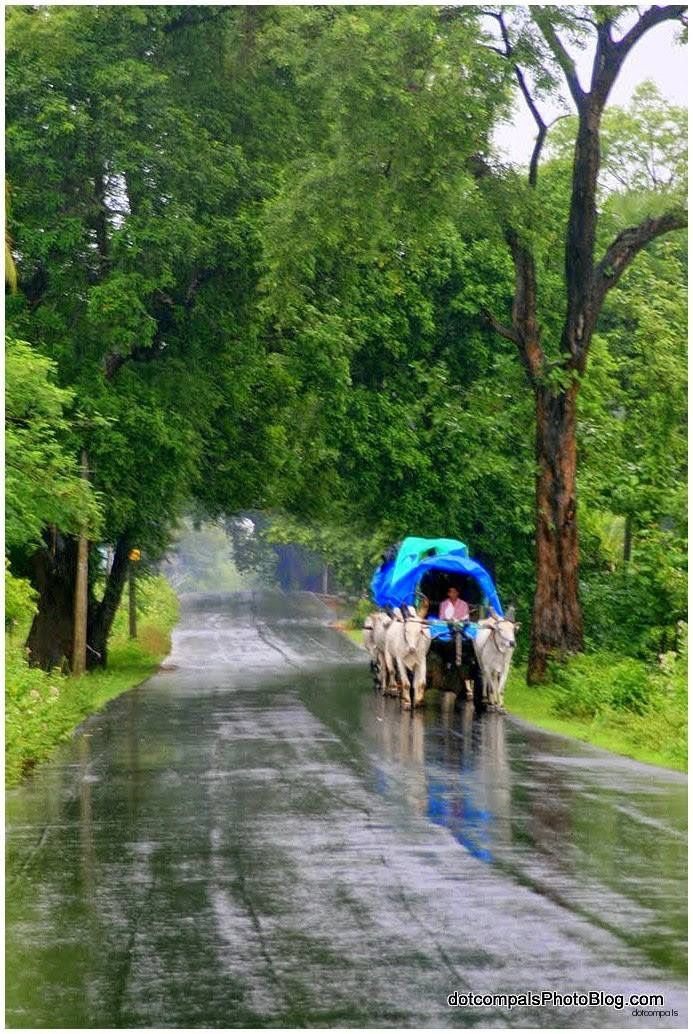 Kerala Landscape Photography
