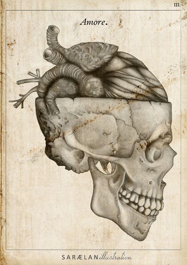 Love From Anatomy Lessons By Saraelan Donati Art Pinterest