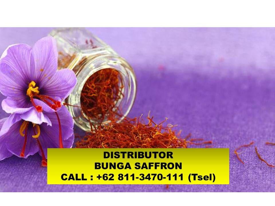 Pin Di Bunga Saffron