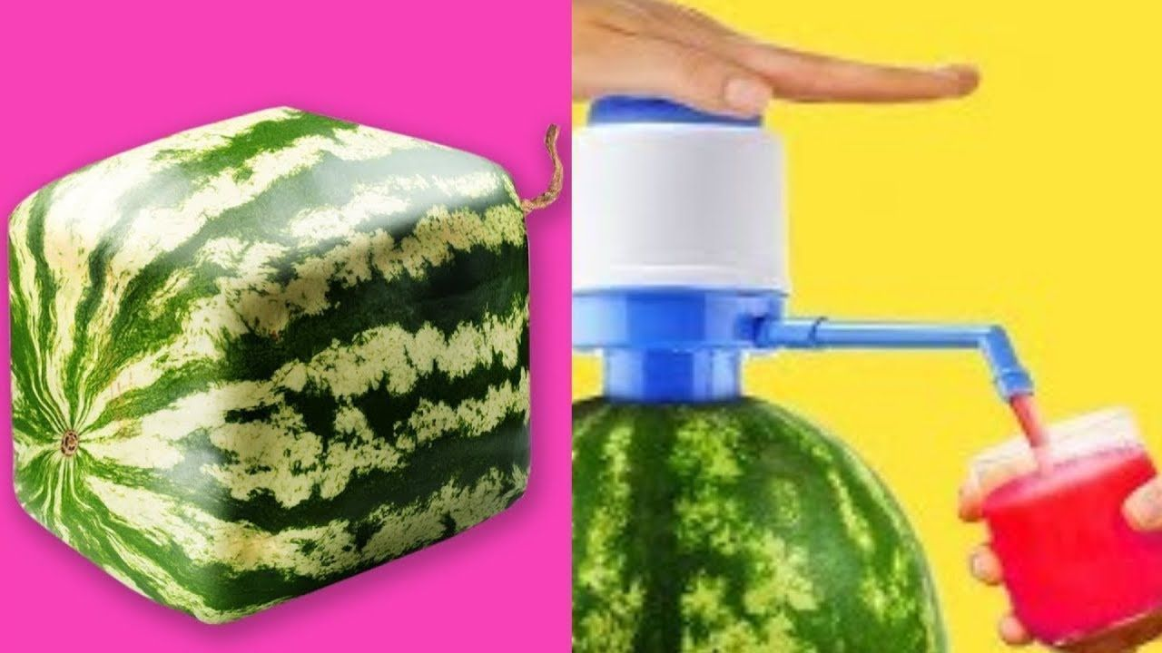 TRYING 15 UNBELIEVABLY EASY WATERMELON  LIFE HACKS By 5 Minute Crafts #5minutecraftsvideos TRYING 15 UNBELIEVABLY EASY WATERMELON  LIFE HACKS By 5 Minute Crafts #5minutecraft #5-minutecrafts #easylifehacks #Hack #howtocutawatermelon #lifehacks #lifehackswithwatermelon #lifehacks #Robby #summerlifehacks #Trying5minutecrafts #watermelon #watermeloncake #watermelonhacks #watermelonlifehacks #5minutencraftsvideo TRYING 15 UNBELIEVABLY EASY WATERMELON  LIFE HACKS By 5 Minute Crafts #5minutecraftsvide #5minutecraftsvideos