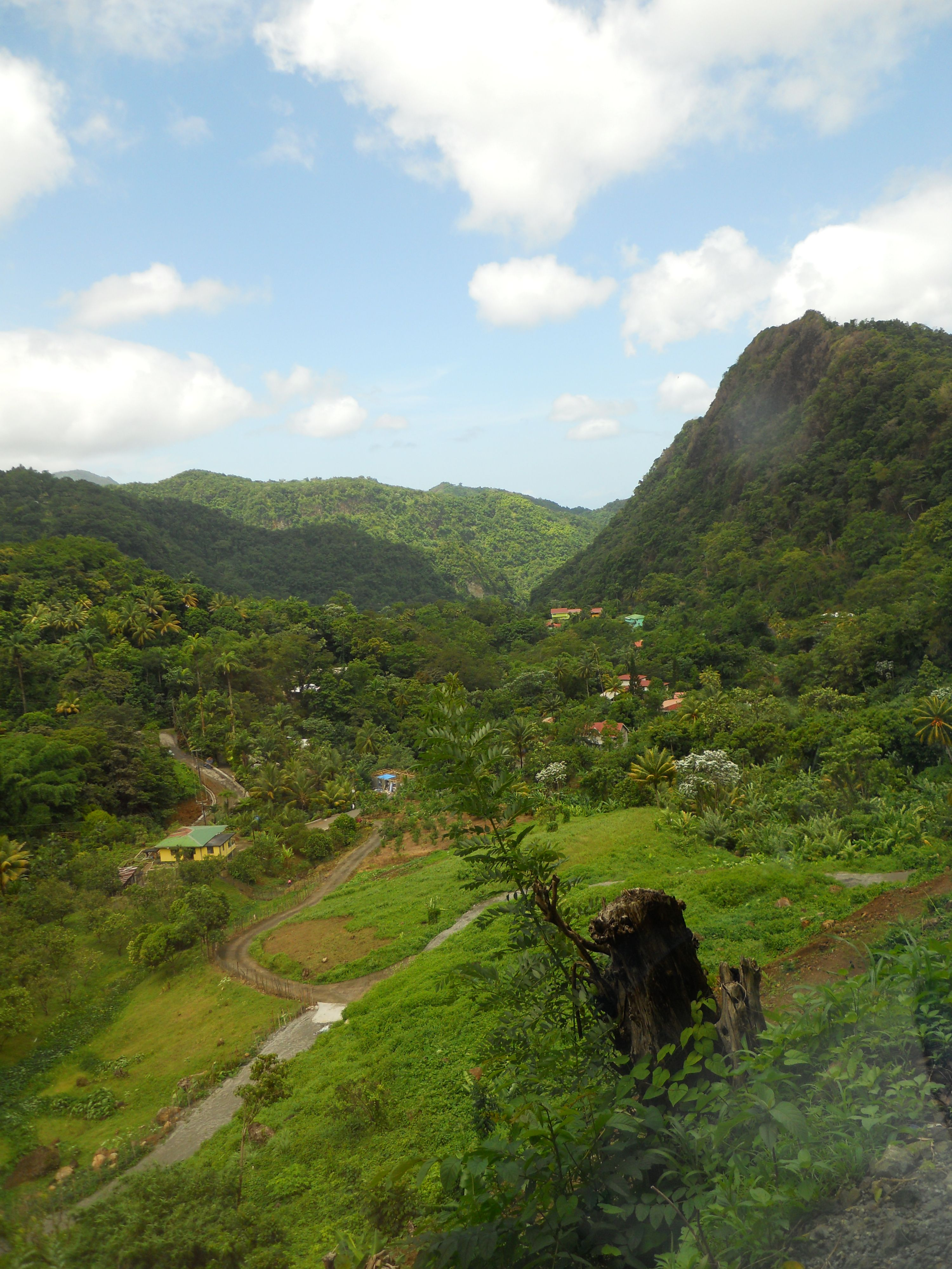 Dominica destination wedding planner 3d event planning