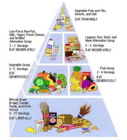 Humans Were Not Created To Eat Meat Vegetarian Diet Is Healthier Vegetarian Food Pyramid Vegan Food Pyramid Food Pyramid