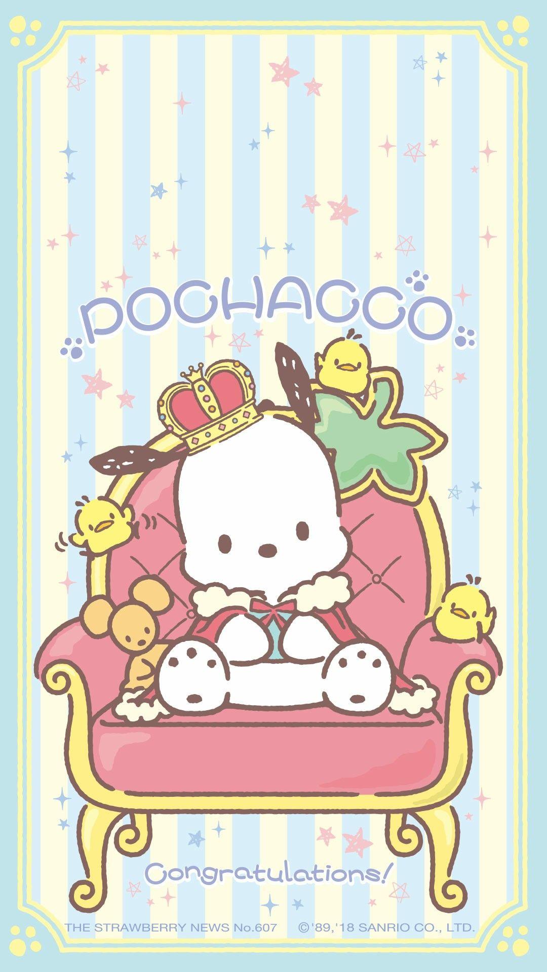 Pochacco In 2019 Hello Kitty Wallpaper Sanrio Wallpaper