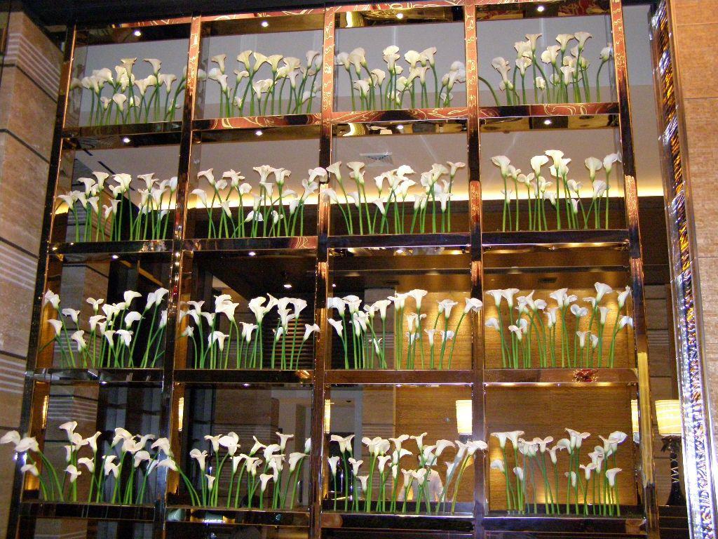 Cala lily display in modern trellis/vertical garden | Vertical ...