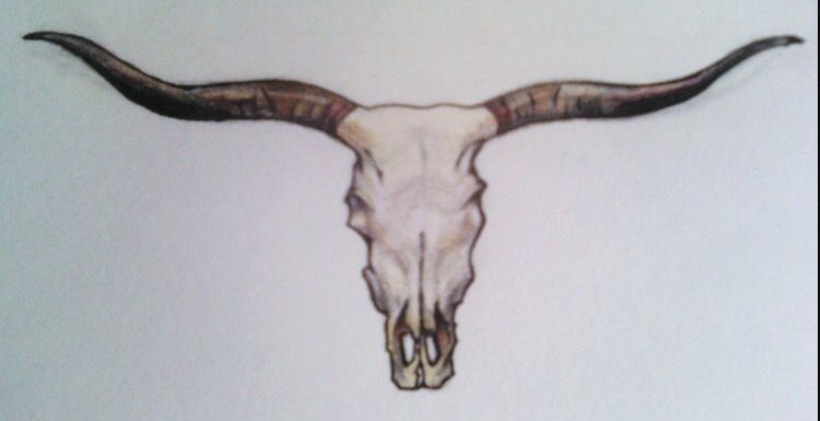 Longhorn Texas Tattoo Inked Up Tattoos Bull Skull Tattoos