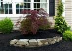 simple landscaping ideas front yard pictures