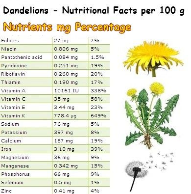 Nutritional Facts Dandelions Nutrition Dandelion Nutrition Facts