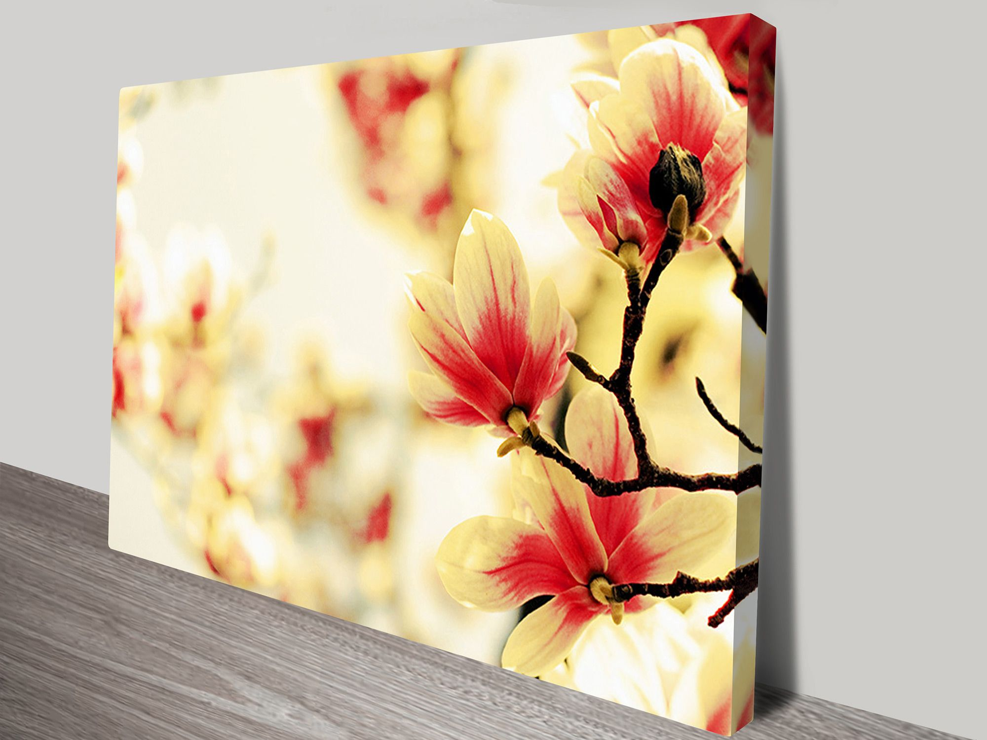This stunning wall art photo canvas shows red-and-white flower ...