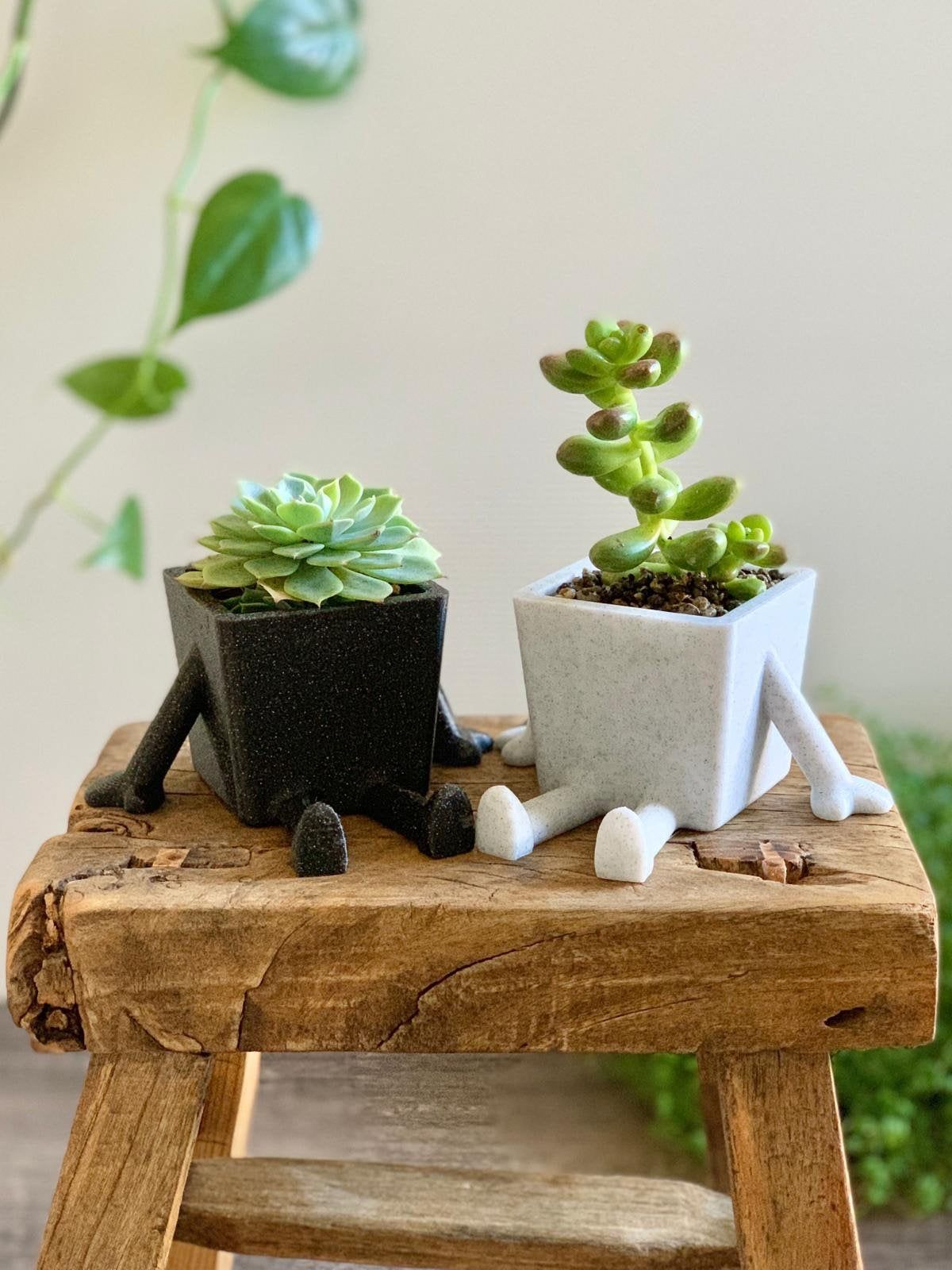 Cute Succulent Planter With Arms And Legs Sitting Planter Etsy In 2020 Plant Pot Decoration Indoor Plant Pots Succulent Planter
