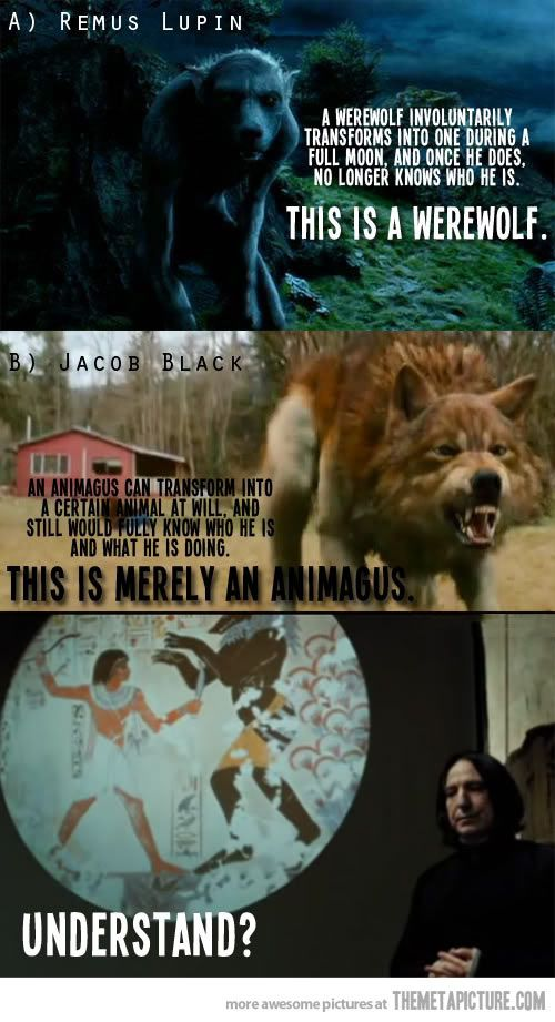 Thanks Snape Harry Potter Funny Harry Potter Vs Twilight Harry Potter Fan