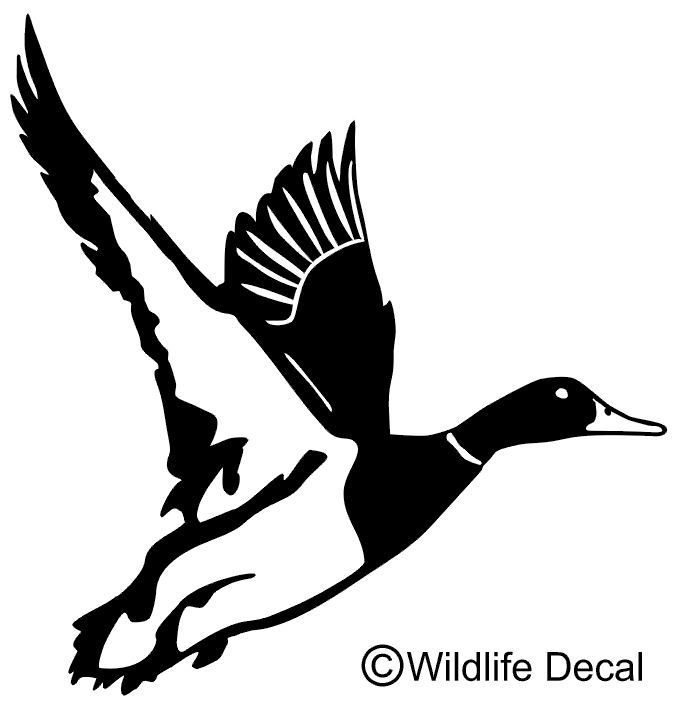 Duck In Flight Decal MD Wildlife Waterfowl Hunting Stickers - Hunting decals for truckshuntingfishing window decals in white or camouflage at woods