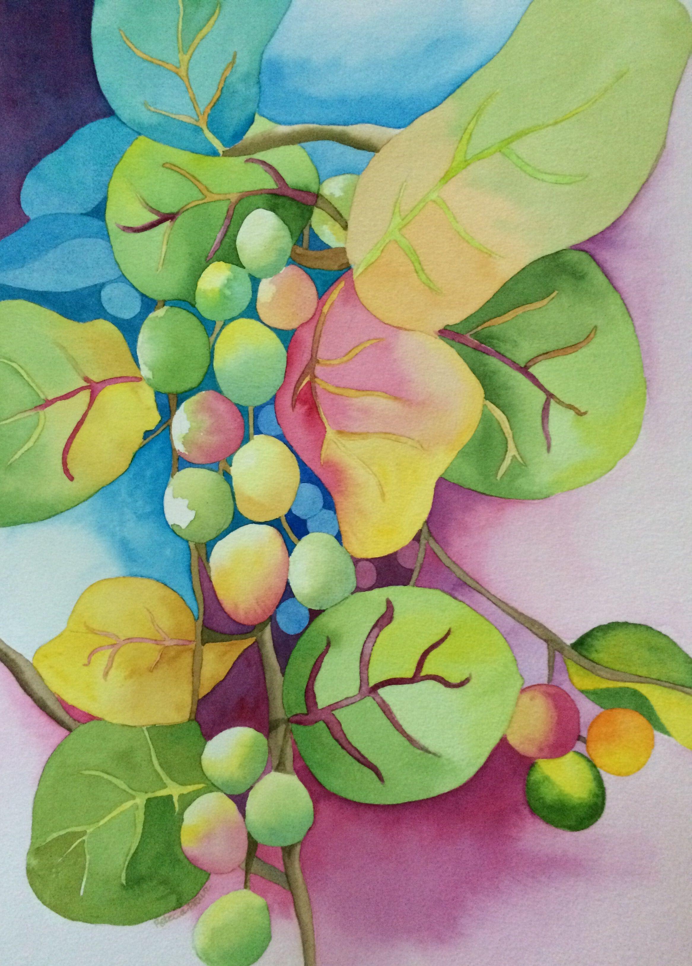 Sea Grapes 15 x 22 by Rebecca Brown