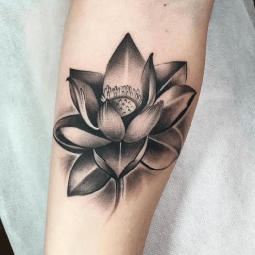Lotus Flower Tattoo Black And Grey