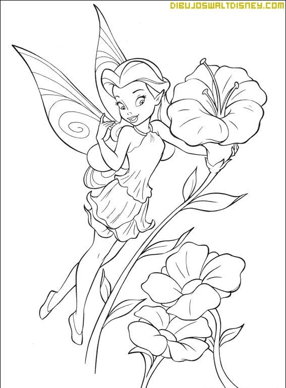 Rosetta Princesa Para Pintar Princesas Para Colorear Dibujos