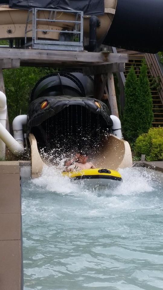 Black Anaconda At Noah S Ark Wisconsin Dells Great Wolf Lodge Water Park