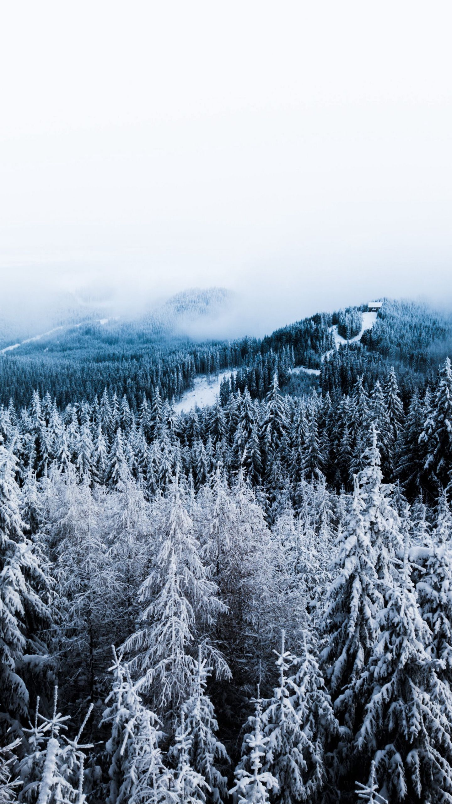See My Collection Of Cool Iphone And Android Winter Wallpapers And Background Images In Hd Get I Winter Wallpaper Winter Wallpaper Hd Iphone Wallpaper Winter