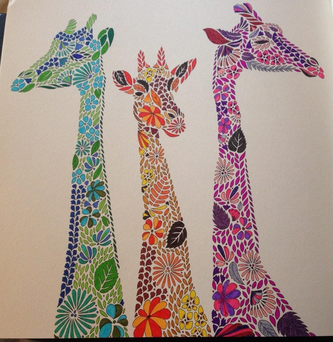 Millie Marotta's Animal Kingdom - A Colouring Book ...