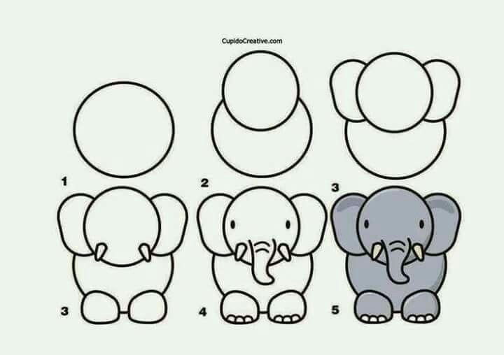 Dibujando elefante