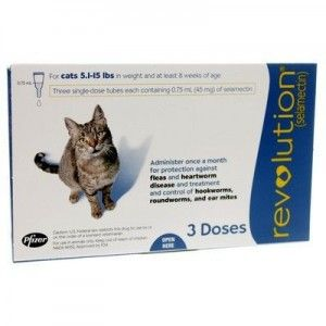 Revolution Is Available For Cats And Dogs Revolution Protects