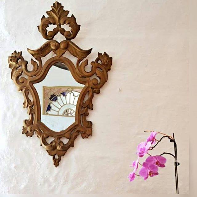 Detalles de nuestra zona de trabajo. #espejo #orquidea #espaciosunicos #decoracion #antiguedades