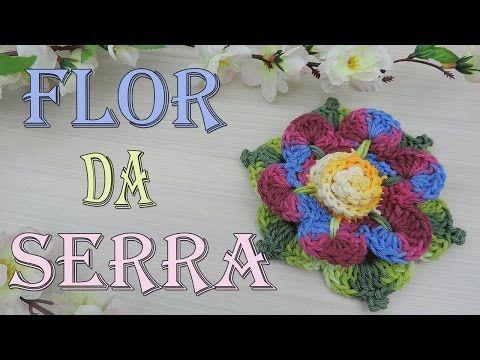 """FLOR DA SERRA – CROCHET """"VIDEOAULA""""   Mundo de Soraia"""