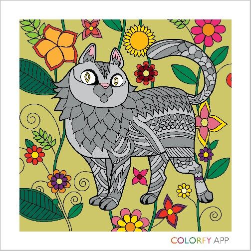 Colorfy Cute Drawings Colorfy Cat Colors