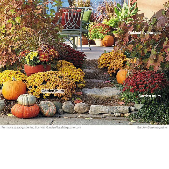 Fall showstoppers Autumn garden, Colorful garden, Garden mum