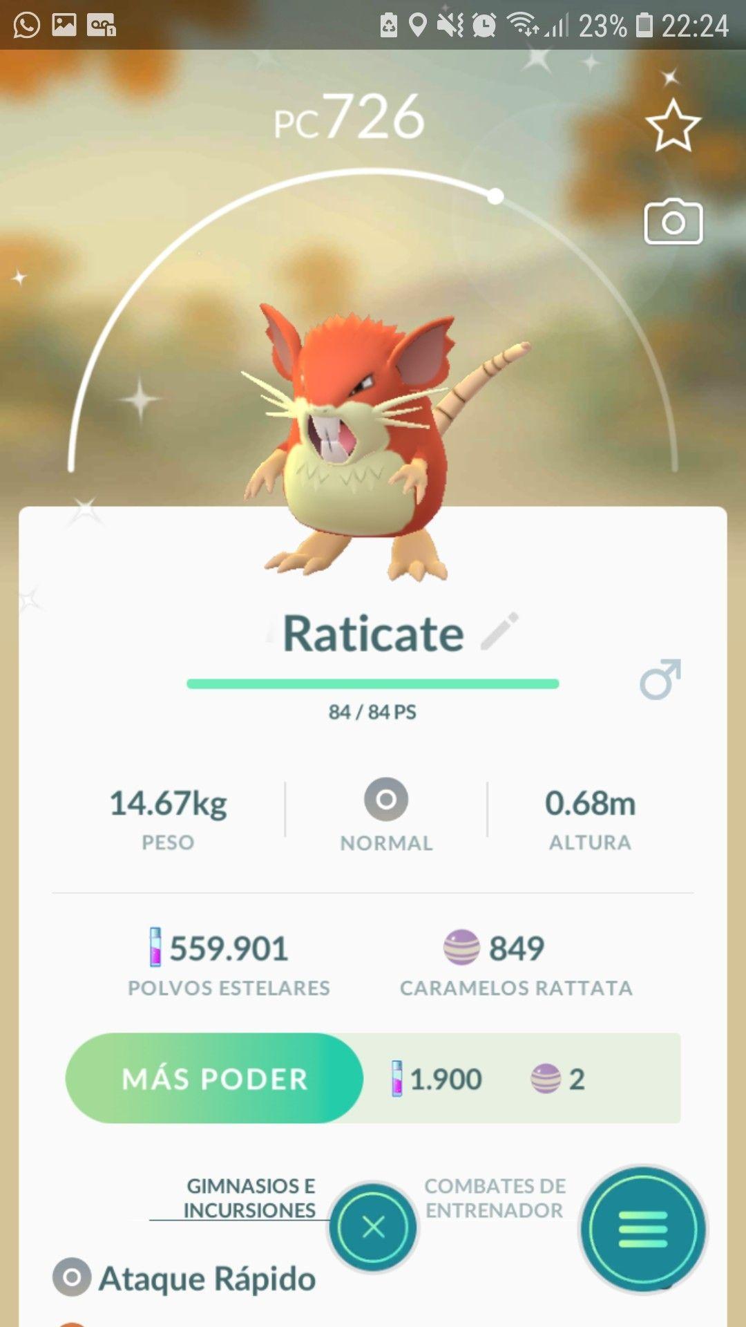 Raticate Shiny Pokemon Go   Pokemon go, Pokemon, Shiny pokemon