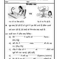 Language Hindi Grammar - Homonyms in Hindi | hindi Worksheets ...