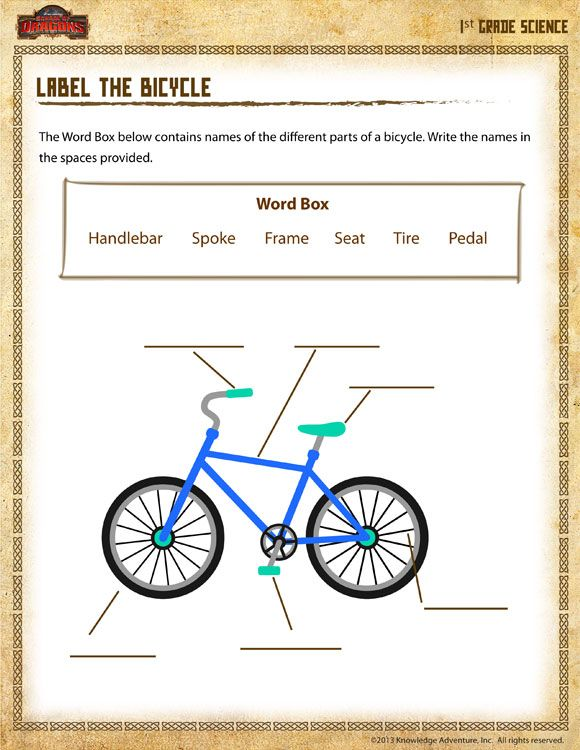 Label The Bicycle Printable Science Worksheets Bike Safety