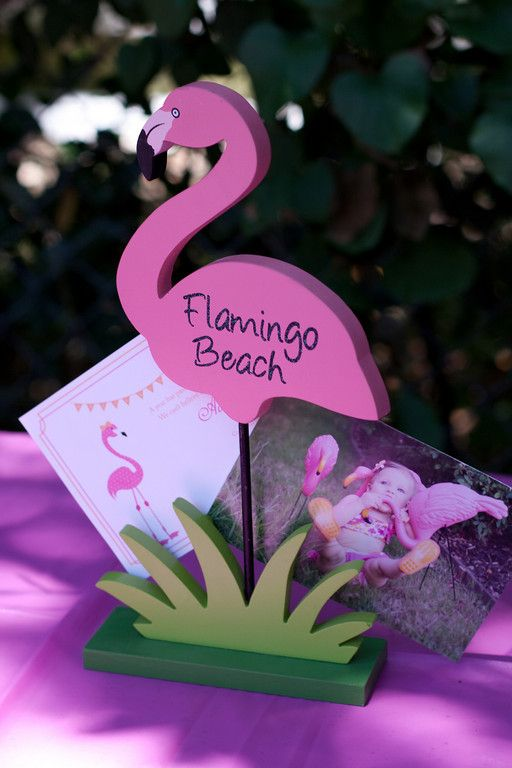 Pink Party Girl: A Pink Flamingo First!