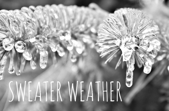 winter 2014 ice storm