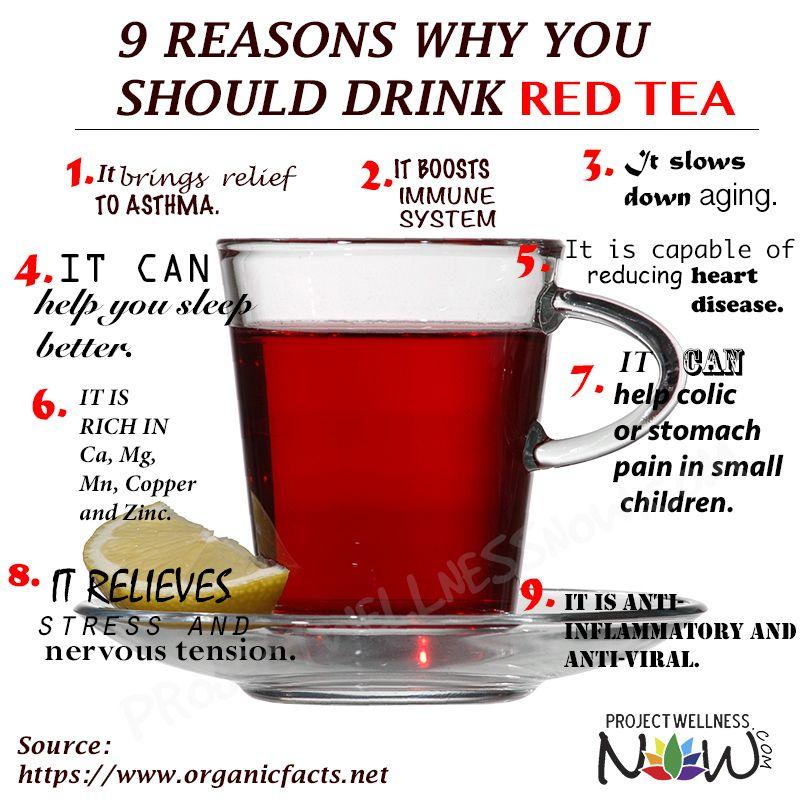 Image result for red bush tea