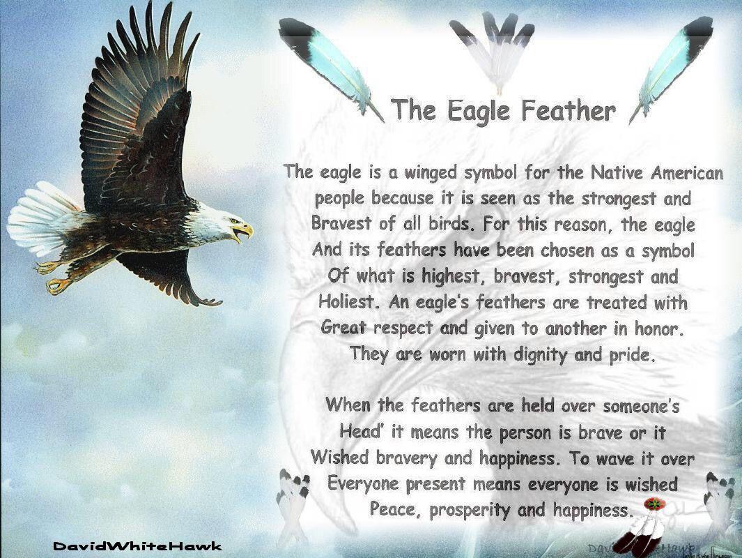 Spiritual eagle quote sage smudging spiritual rituals spiritual eagle quote biocorpaavc Choice Image