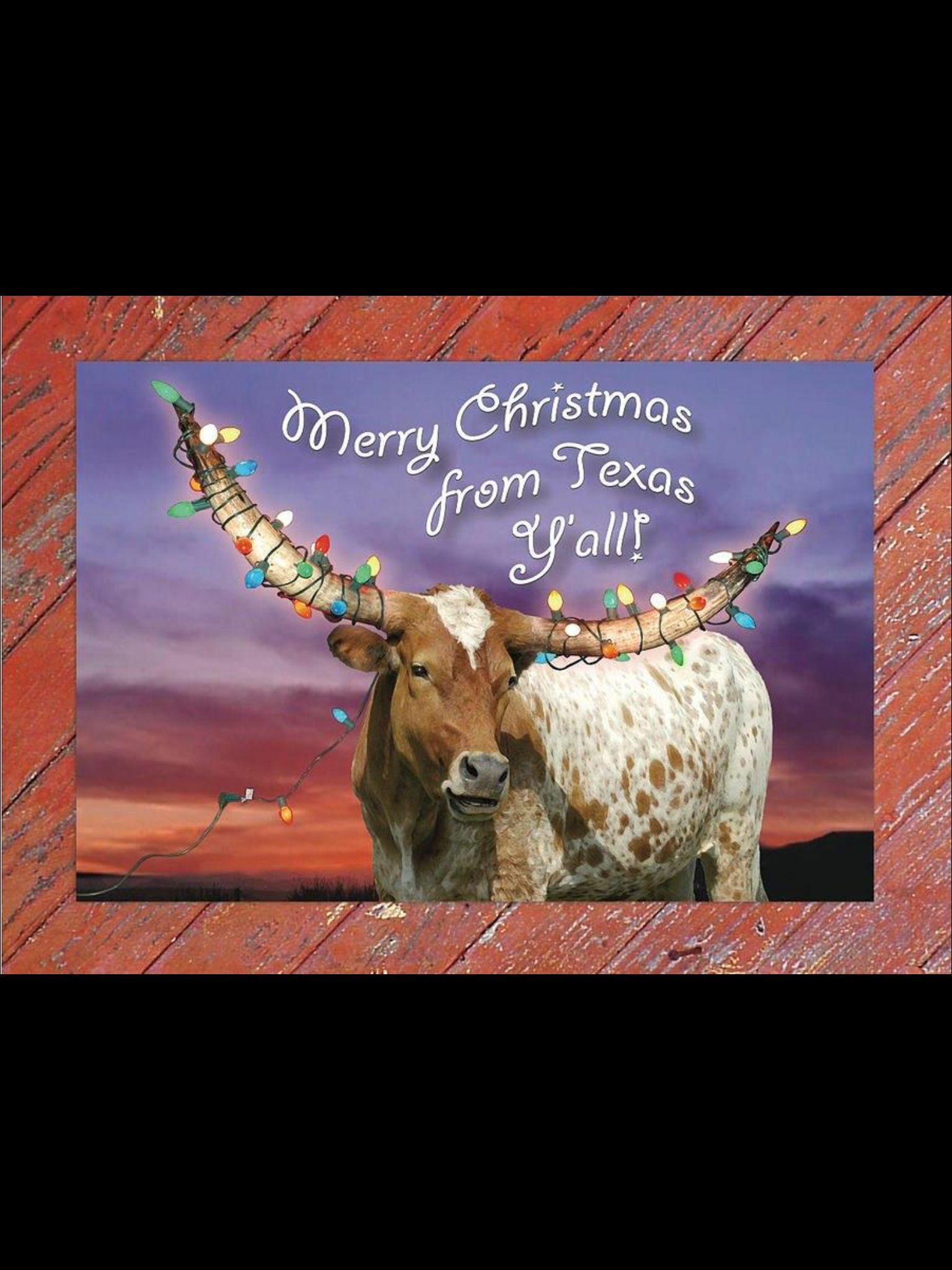 Texas Christmas Card | Fun stuff | Christmas, Christmas Cards, Texas
