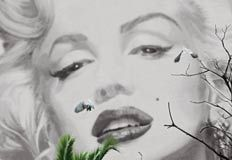 Marilyn by Valery Hache image