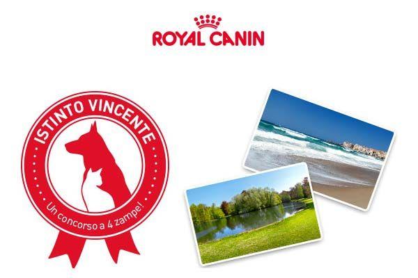 Vinci un soggiorno per due con Royal Canin   Offerte in ...